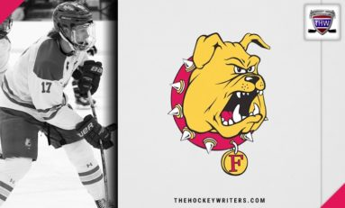 2019 Great Lakes Invitational Preview: Ferris State Bulldogs