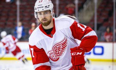 Detroit Red Wings: Filip Hronek's Defense Partner