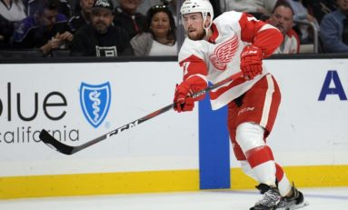 Red Wings Rebuild: Two Years into the Future