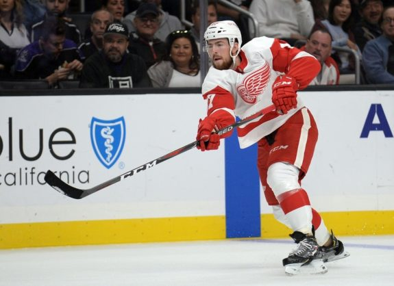 Detroit Red Wings defenseman Filip Hronek