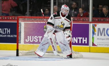 Red Wings Goaltending Prospects Steadily Progressing