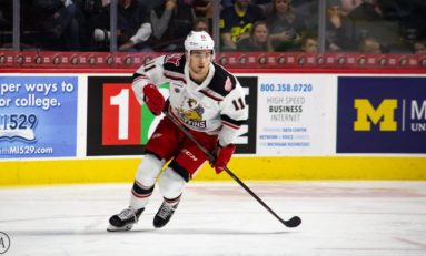 Filip Zadina Is Debunking AHL Misconceptions