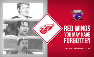 3 Former Red Wings You May Have Forgotten About