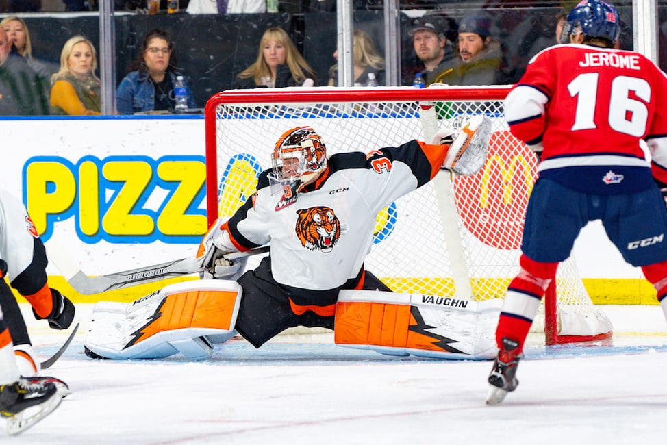 Garin Bjorklund - 2020 NHL Draft Prospect Profile
