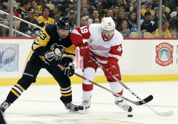 Axel Holmstrom of the Detroit Red Wings.