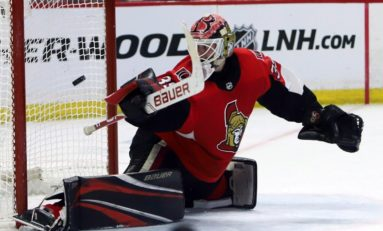 Diving into the Senators' Deep Group of Young Goalies