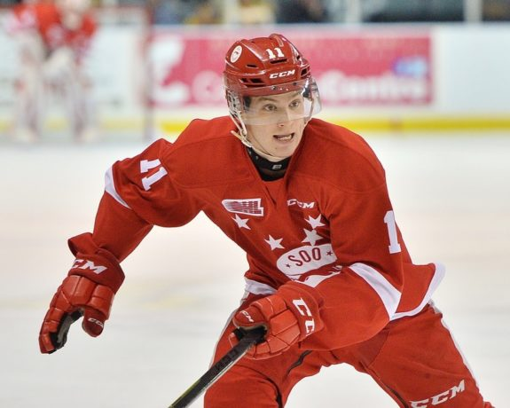 Mac Hollowell - Sault Ste. Marie Greyhounds