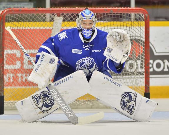 Jacob Ingham Mississauga Steelheads
