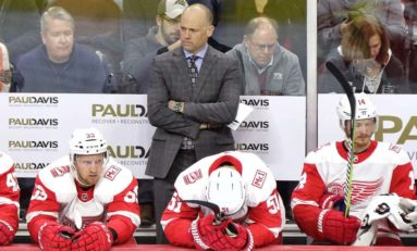 Rooting for the Red Wings: Which Way Are You Leaning?