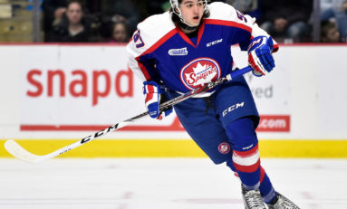 Leafs Year-End Prospect Update: CHL Edition