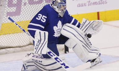 Leafs' Search for a Backup Goalie