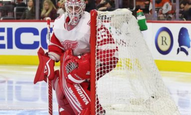 Red Wings Most Wanted: Goalies