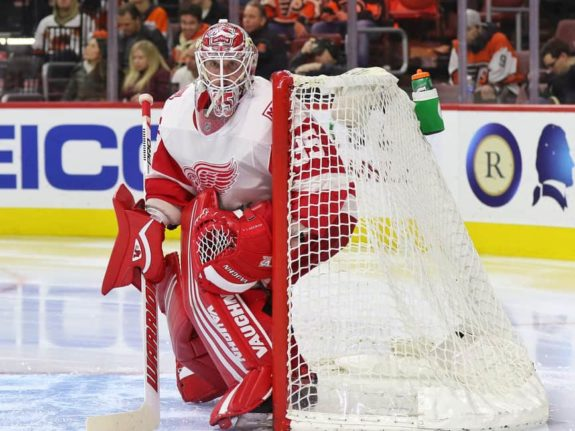 Jimmy Howard of the Detroit Red Wings