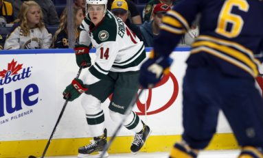 Can Eriksson Ek Provide a Spark for The Wild?