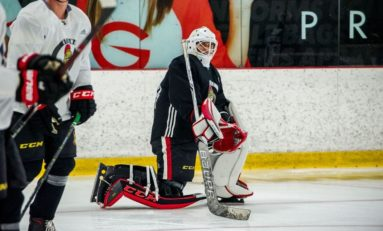 Senators' All-Time One and Done Goalies
