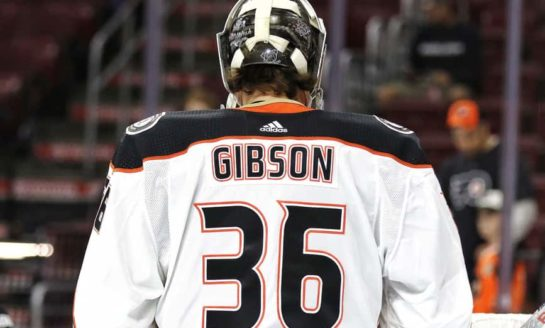 Ducks' Offseason Primer: Goalie Edition