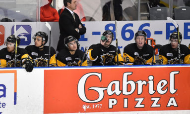 Hamilton Bulldogs Have a Playoff Problem