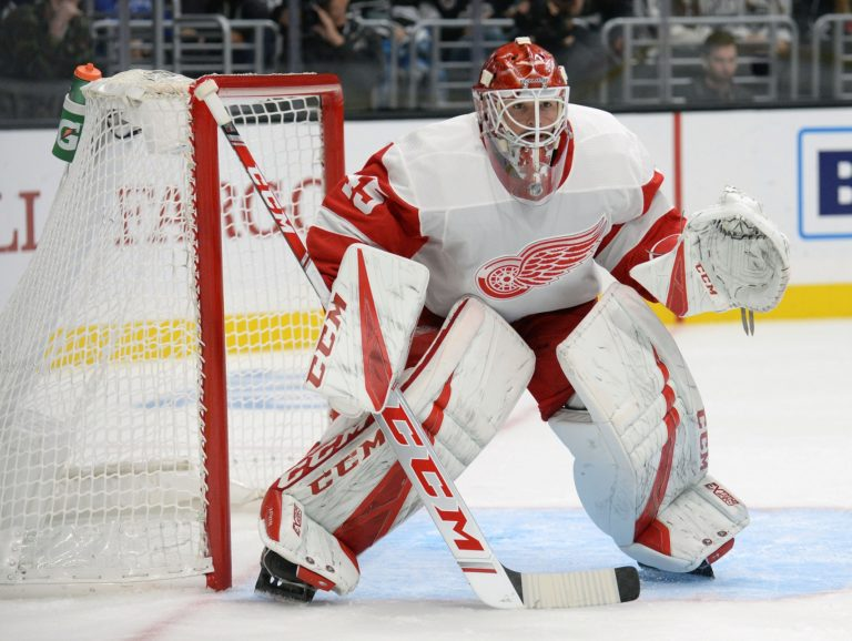 Red Wings goaltender Jonathan Bernier