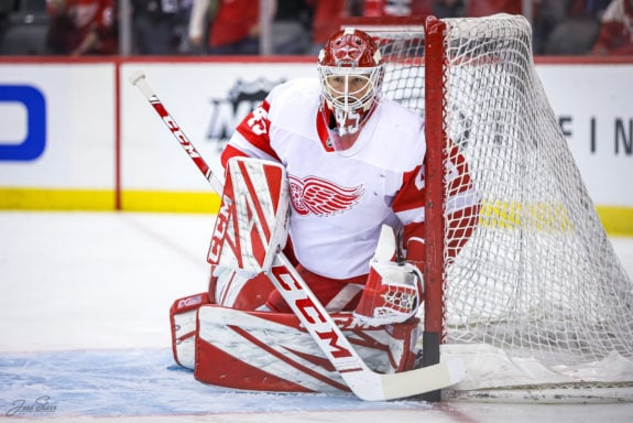 Jonathan Bernier of the Detroit Red Wings