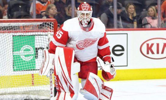 Bernier Makes 42 Saves, Red Wings down Canadiens