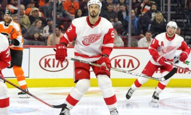 Red Wings Put Jonathan Ericsson on Waivers