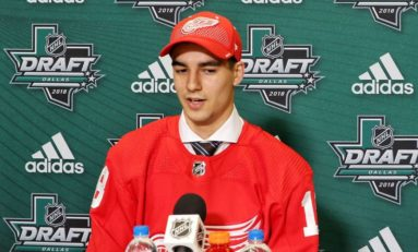 Joe Veleno: A Key Piece of the Red Wings' Future