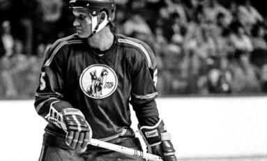 One for the Ages: Gary Bergman's 1975-76 NHL Season