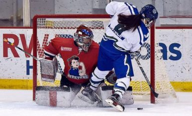 Recapping the NWHL's First Half