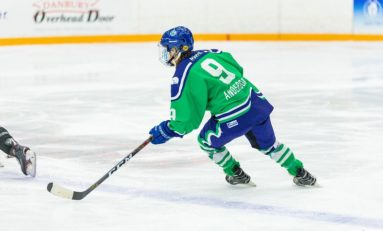 Whale Bring Back Anderson For 4th NWHL Season