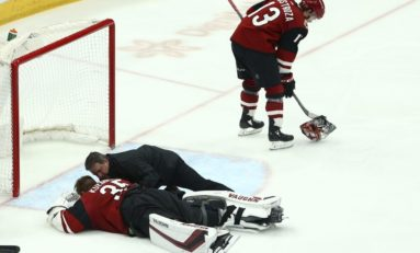 Kings Crown Coyotes - Playoffs Chances Hurt