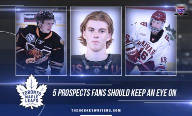 5 Maple Leafs Prospects Fans Should Keep An Eye On