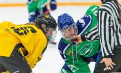 NWHL Season 6 Start Delayed Until January