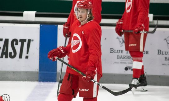 The Grind Line: Red Wings Rookie Blueliners - Who Should Stay?