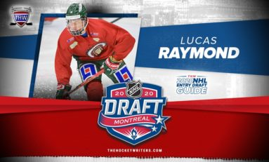 Lucas Raymond – 2020 NHL Draft Prospect Profile