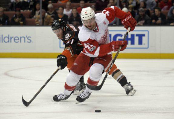 Luke Glendening of the Detroit Red Wings.