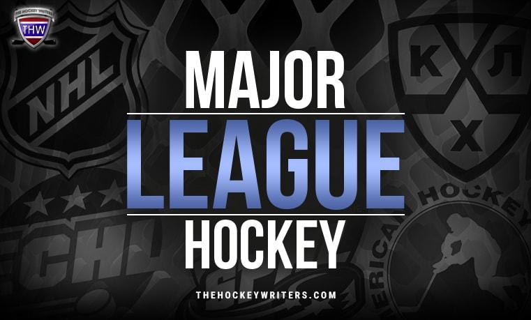 indy league USA Major League Hockey NHL, KHL, AHL, ECHL and SPHL logos