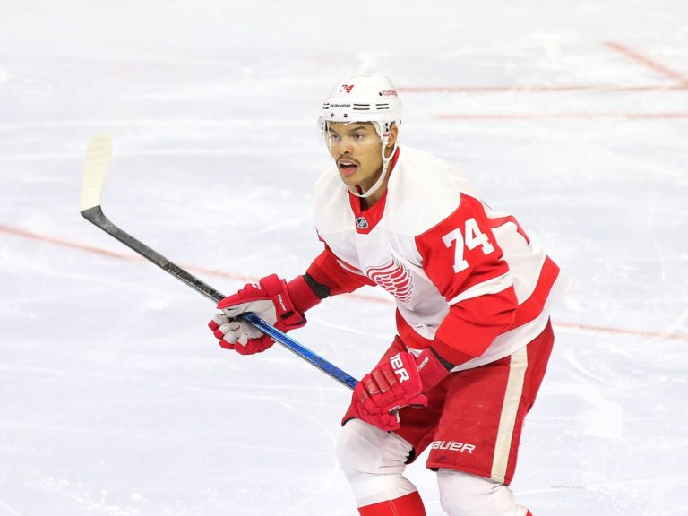 Madison Bowey Detroit Red Wings