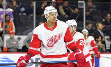 Red Wings' Bowey Still Searching for Defensive Consistency