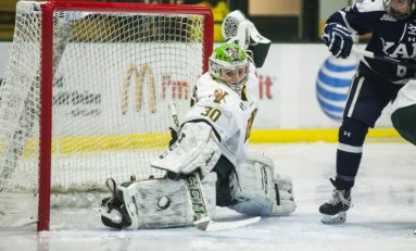 Rookie Litchfield Becomes Pride's 3rd Netminder