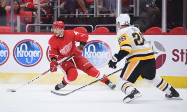 How Can Frk Stick with the Red Wings?
