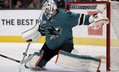 Top 5 Alternatives to Sharks Goalie Jones