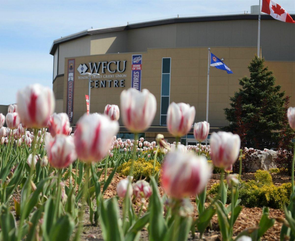 WFCU Centre, Windsor, ON