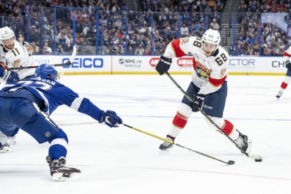 Panthers left wing Mike Hoffman, Ryan McDonagh