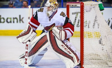 Coyotes Trade Mike Smith to Flames