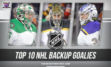 Top 10 NHL Backup Goaltenders