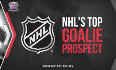 Who is the NHL's Top Goaltending Prospect?