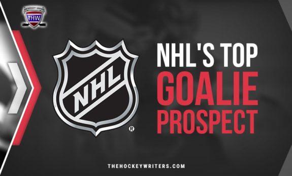 NHL's Top Goalie Prospects