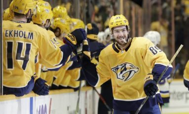Predicting the Predators' Expansion Draft Protections