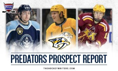 Predators' Prospect Pipeline: An Overview