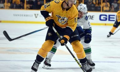 Predators' Bonino Has Value Far Beyond Goals